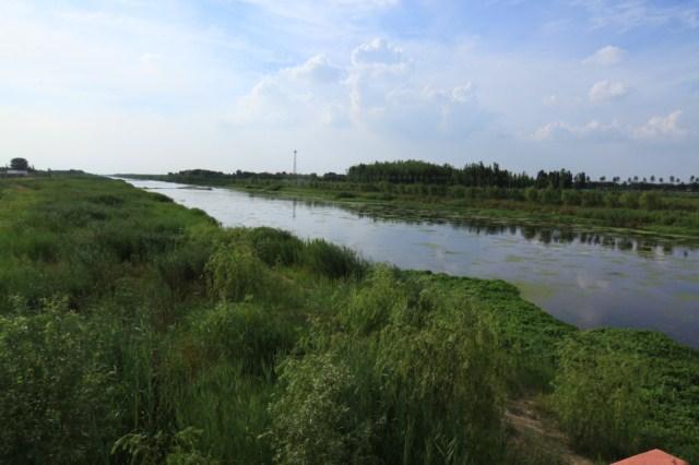 高密市北胶新河人工湿地